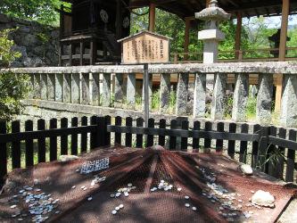 IMG 0022 w400 h250 【旅行】上田城跡公園に乗り込んで来たよ!