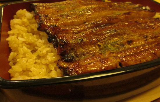 IMG 0400 【反省会】ウナギのタレご飯って美味しいよね!Twitterアカウントを凍結された結果、泣きながらウナギを食べに行きました