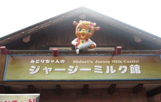 IMG 0517 【旅行】那須りんどう湖ファミリー牧場でアルパカを見る【那須】
